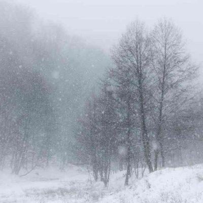 Winter Storm Jonas is on the way!